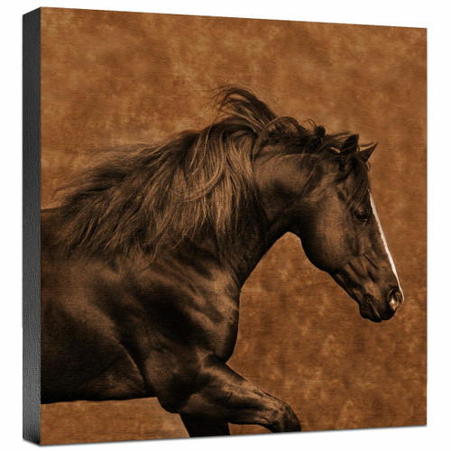 Eastward Gallop Gallery Wrapped Canvas
