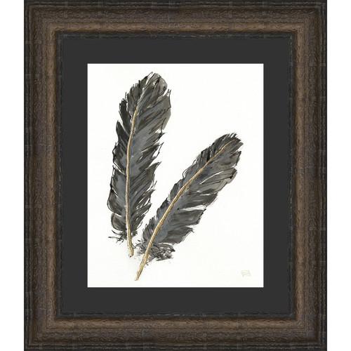 Feathers II Framed Print