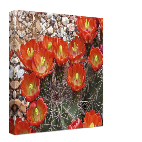 Fiery Desert Blooms Wrapped Canvas