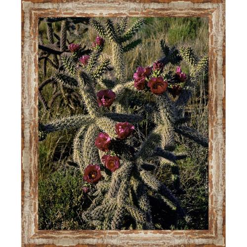 Sedona Cactus Framed Canvas