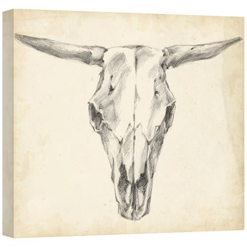 Western Skull Mount II Gallery Wrapped Canvas