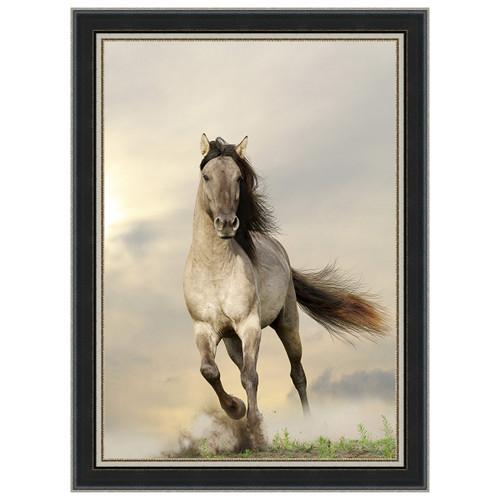 Wild Stallion Black Framed Canvas