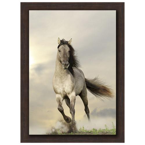 Wild Stallion Brown Framed Canvas