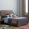 Urban Modern Walnut King Platform Bed Frame with Drawers