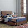 Urban Modern Walnut King Platform Bed with Drawers