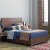 Urban Modern Walnut King Platform Bed Frame with Drawers