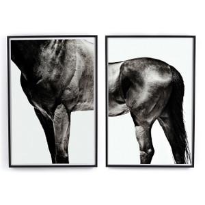 Horse Wall Art by Yusuke Murata