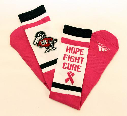 SALE - Hope, Fight, Cure Knee High Socks
