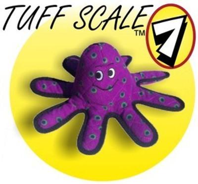 Octopus - Lil OscarTuff scale: 7
