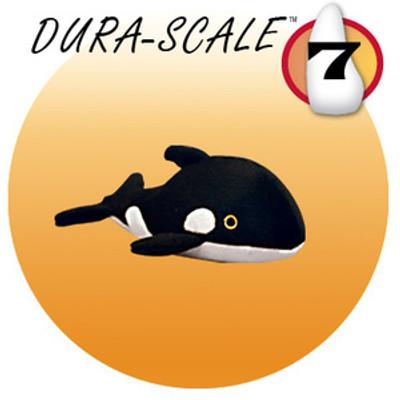 Wylie whale Jr.
