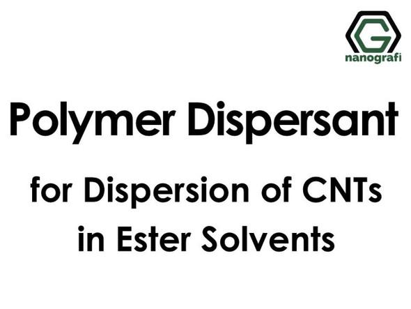 Polimer Dispersant - Ester Çözücülerde Karbon Nanotüpleri Dispers Etmek İçin