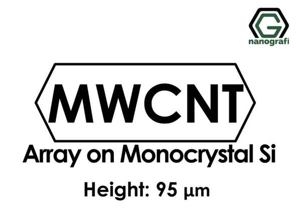 Çok Duvarlı Karbon Nanotüp - Monokristal Silikon Üzerinde Sıralanmış, Yükseklik: 95um