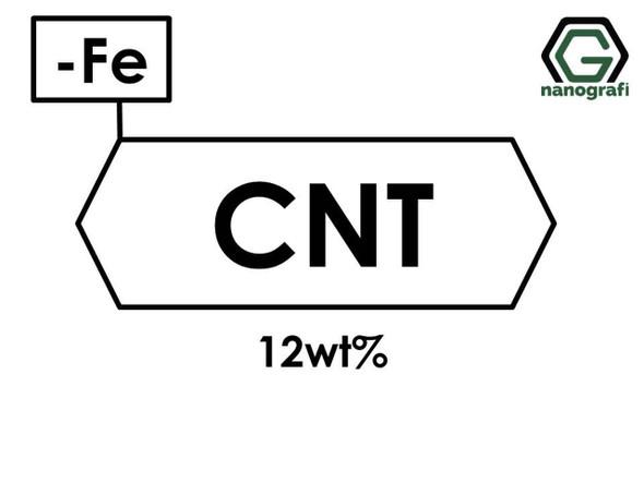 Karbon Nanotüp Katkılanmış: 12 %ağ Demir(Fe) Nanopartikül/Nanotoz