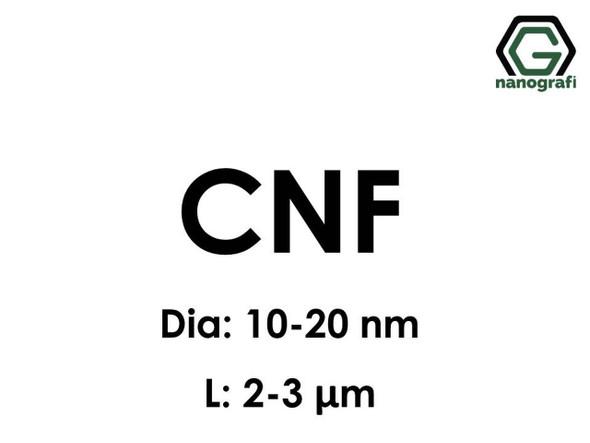 Nanofibril Selüloz (Fibril Nano selüloz, CNFs)