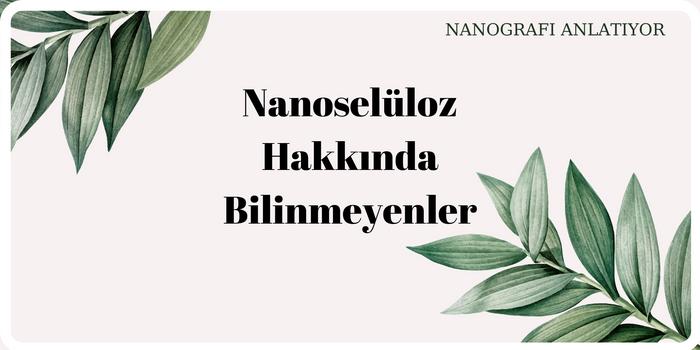 Nanoselüloz Hakkında Bilinmeyenler