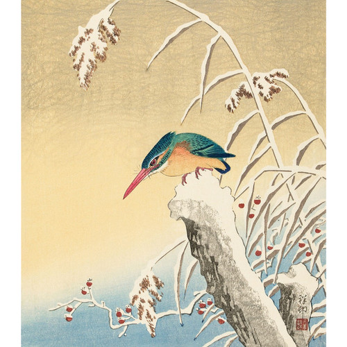 Kingfisher in the Snow  - DIY Painting By Numbers Kit