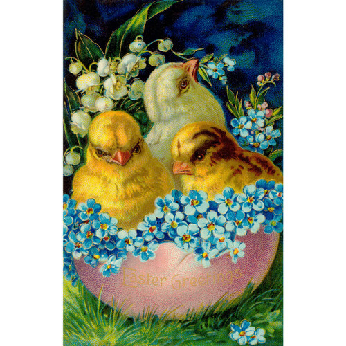 Little Chicks - DIY Painting By Numbers Kit