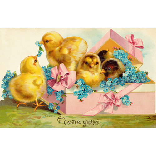 Basket of Chicks - DIY Painting By Numbers Kit