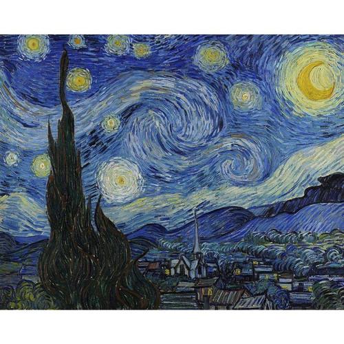 Vincent van Gogh - Starry Night - DIY Painting By Numbers Kit