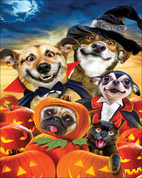 Halloween Dogs - DIY Paint By Numbers Kit