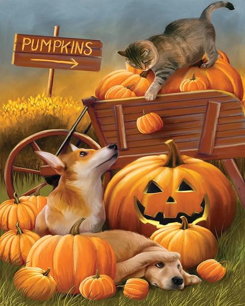 Animal Pumpkin Cart - DIY Paint By Numbers Kit