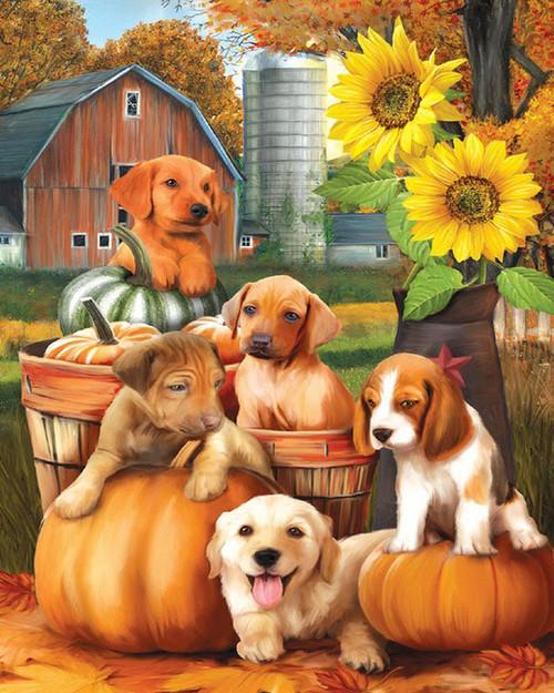 Dog Pumpkin Farm - DIY Paint By Numbers Kit