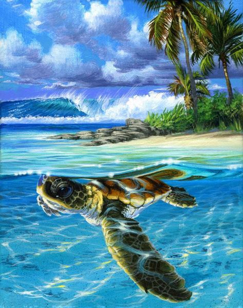Blue Sea Turtle - DIY Painting By Numbers Kit