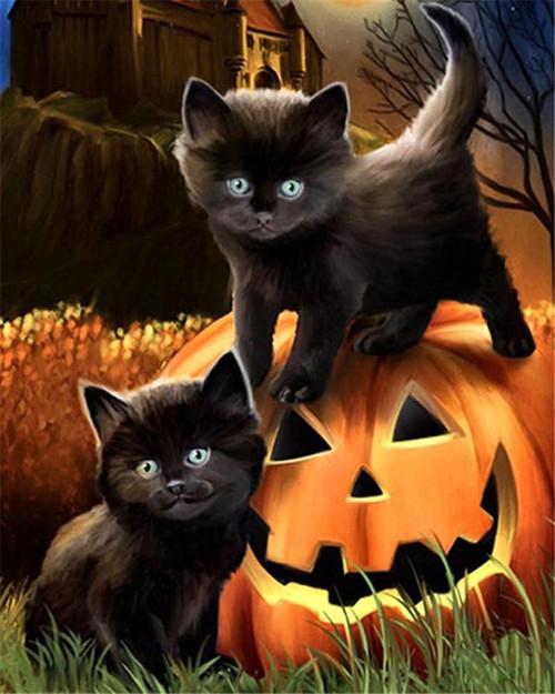 Cute Black Kittens - DIY Paint By Numbers Kit