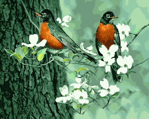 American Robins  - DIY Paint By Numbers Kit