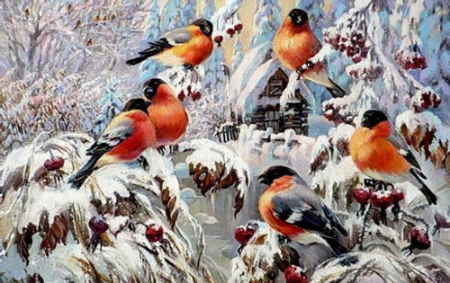 Winter Trees Robins  - DIY Paint By Numbers Kit