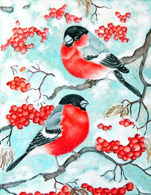 Red-Bellied Birds  - DIY Paint By Numbers Kit