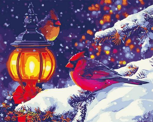 Winter Cardinal Nighttime - DIY Paint By Numbers Kit