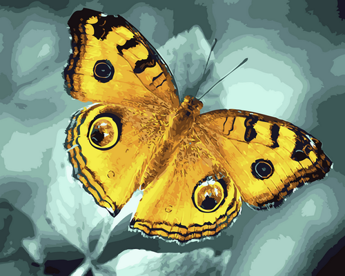 Golden Butterfly - DIY Paint By Numbers Kit