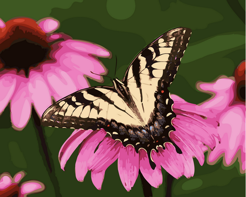 Floral Butterfly Close Up - DIY Paint By Numbers Kit