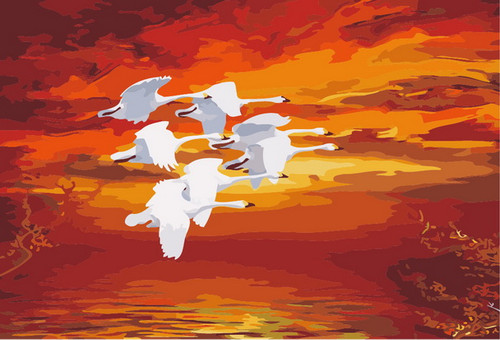 White Birds Flying V - DIY Paint By Numbers Kit