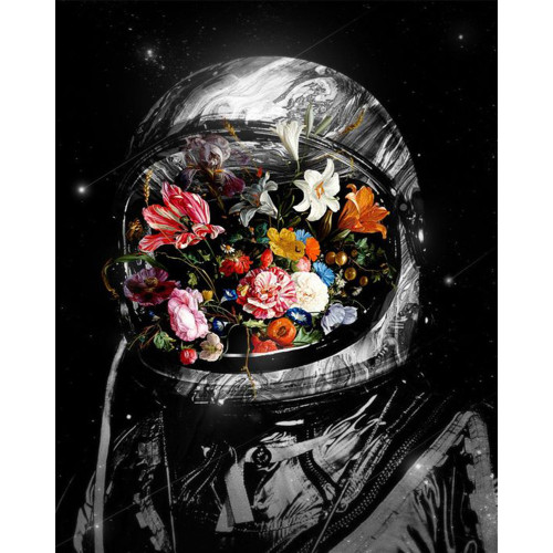 Flower-Filled Space Suit - DIY Paint By Numbers Kit