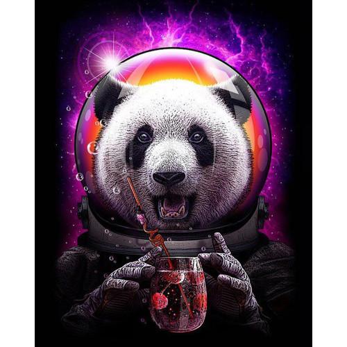Happy Space Panda - DIY Paint By Numbers Kit