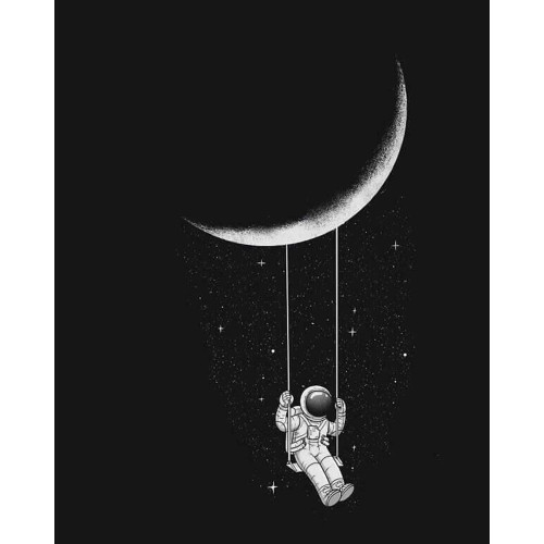 Swingin' By The Moon - DIY Paint By Numbers Kit
