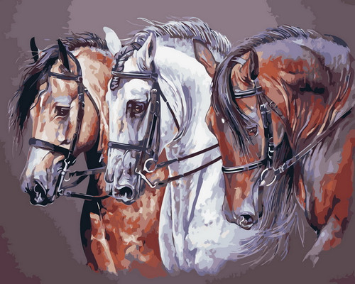 Race Horse Trio - DIY Paint By Numbers Kit