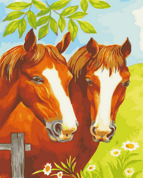 Close Up Horse Duo - DIY Paint By Numbers Kit