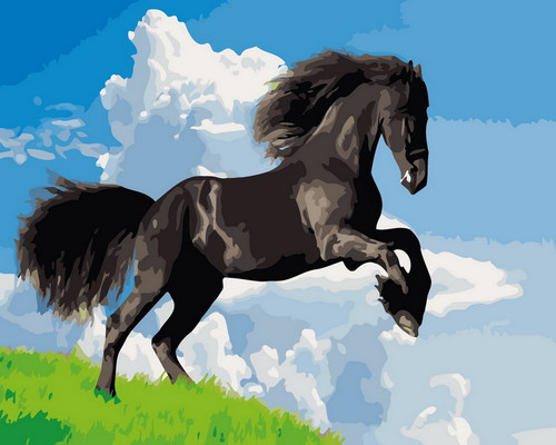 Black Horse In Nature - DIY Paint By Numbers Kit