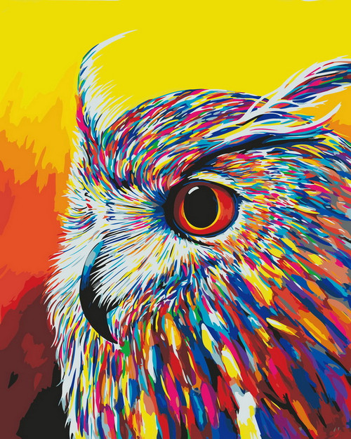 Color Blast Owl Close Up - DIY Paint By Numbers Kit