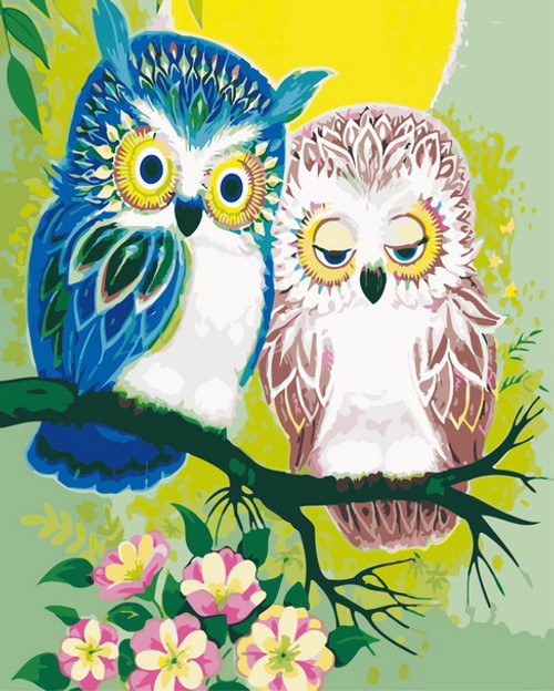Pink & Blue Owl Duo - DIY Paint By Numbers Kit