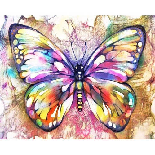 Butterfly Art - DIY Painting By Numbers Kit