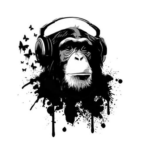 Funky Monkey - DIY Painting By Numbers Kit