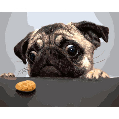 Hungry Pug - DIY Painting By Numbers Kit