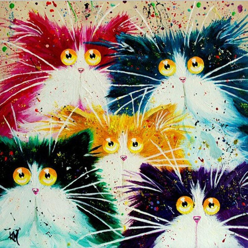 Shocked Cats - DIY Painting By Numbers Kits
