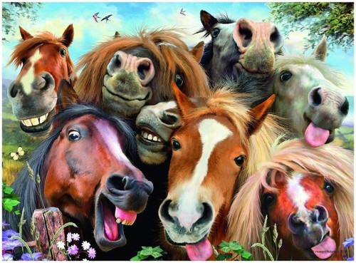 Selfie Horses - DIY Painting By Numbers Kit