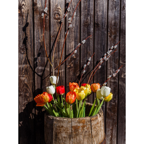 Picturesque Flowers - DIY Painting By Numbers Kit