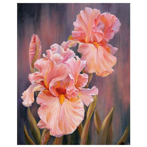 Spectacular Flowers - DIY Painting By Numbers Kit